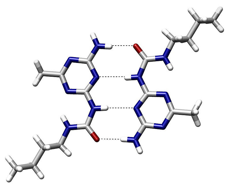 800px-Hydrogen_Bond_Quadruple_AngewChemIntEd_1998_v37_p75